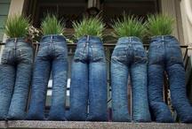 A plant idea