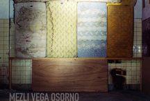 Mezli Vega Orsono / http://photoboite.com/3030/2011/mezli-vega-osorno/