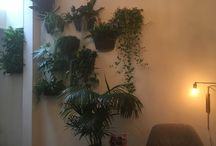 Our living room / Take inspiration of our  urban  garden decor