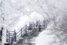 WINTER WONDERLAND / Love white things