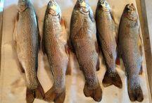 Mahi Kai / Preparation of kai (food) in particular fish and smoking of other kai