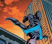 Anisa Gizela Huntress and Nightwing ( Robin)
