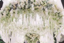 ••wedding••