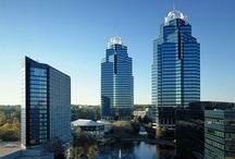 Perimeter / Located on the northern edge of Metro Atlanta, this neighborhood is centered around Perimeter Mall. It is home to many strip malls and office parks and even houses the world headquarters for several corporations.