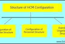 Human Capital Management (HCM) / Human Capital Management (HCM)