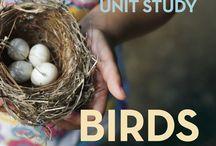 Unit Studies - Tips & Resources