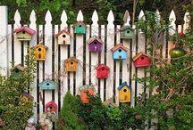 Bird cottages