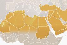 MENA Security Monitor