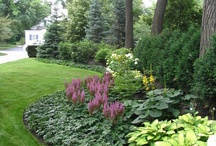 Landscape/Yard Ideas / by Kim Johnson Yeager