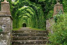 castle gardens