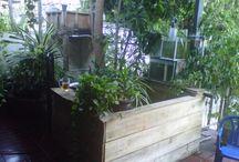 Aguaponics v zahradě / pěstování
