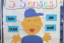 My Very Special Classroom-SS/Science / by Annie Reeves Bradberry
