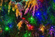 Holidays / by Hannah Douglass