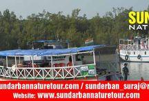 Sundarban Nature
