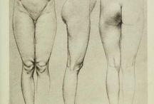 Tekeningen menselijk lichaam