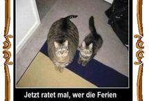Hahaha Funny; ):)