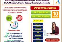 SAP SD Online Training FREE DEMO @ AcuteSoft