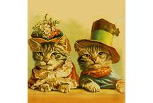 Cats On Postcards / Lots of Postcards with lots of Cats.