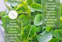 plantes en cuisine
