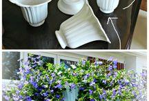 planter/ blomster