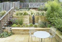 garden: terrace