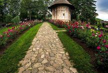 Bucovina monasteries / Romania