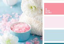 Kamer kleur kombinasies