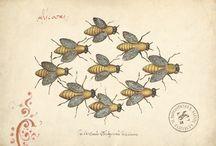 bee haunting / by Andrea Gutierrez
