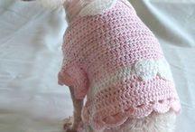 für Hunde stricken