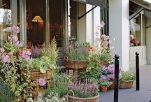 Our Favorite Flower Shops / Some inspiration from some of the most gorgeous flower shops, near and far