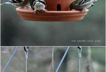 Ptačí krmítka
