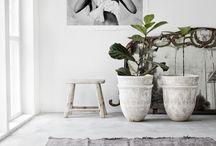 Concrete & Beton