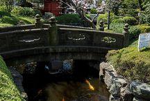 Japan gardening