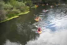 PIRAGÜISMO BIERZO / Disfruta del piragüismo en El Bierzo. Te ofrecemos varias posibilidades: descenso del río Sil, paseo en piragua y diferentes cursos de formación. www.bierzonatura.es
