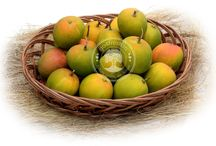 Mango / #Yummy and carbide free #mango that makes a difference in #summer