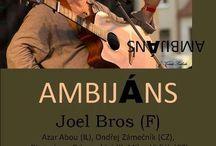 AmbjansII bis / My last caritative concert in Brno Barka Theater