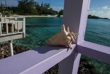Staniel Cay, Bahamas / Escape to the beautiful island of Staniel Cay in the Exumas, an island chain in the Bahamas full of gorgeous sandy beaches, stunning snorkeling spots and rustic Bahamian charm.