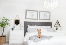Pets in Bed / Our favorite forever friends all cozied up in Authenticity 50 sheets! Dogs, cats, bunnies in bed. Luxury Supima Cotton Sheets. Great  Wedding Gift Idea.