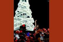 baywalk on December