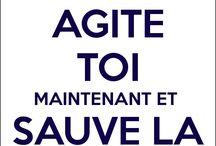 Reste Calme :)