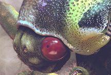 Umbonia Crassicornis - 3D Artist #89