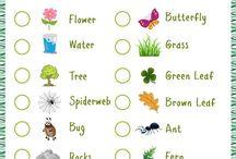 Green Projekt