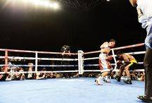 Pee Wee Cruz  / New Westchester Boxing Sensation Pee Wee Cruz is on fire! Check out some great images from prior matches!