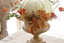 Fall decorations / by Lisa Nardone