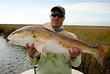Records & Bests - Fish / Fly fishing personal best fish and waterbody records from Texas.