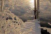 Winter scene's