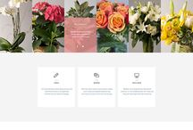 Templates / Nice and minimalistic themes.