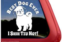 Why a shihtzu is the BEST. Dog. Ever. / by Charla Davis