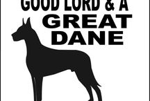 The Great Dane