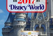 Walt disney world vacation